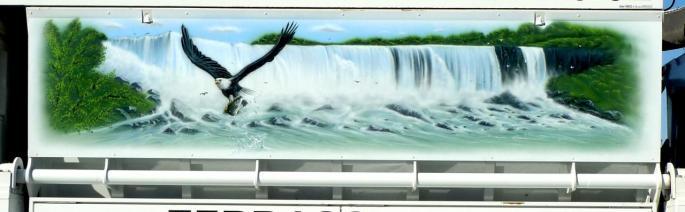 aigle à Niagara